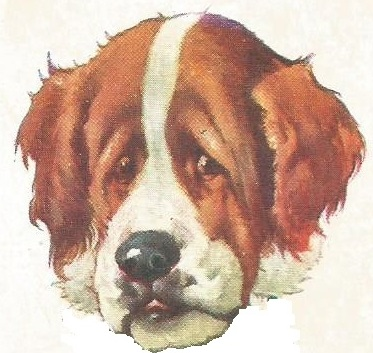 Brown and white dog's head from old children's game card