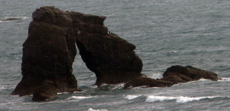 Not fossilised dinosaurs fighting, but the rock with a hole that gives Thurlestone in South Devon its name. Photo (c) J.G. Betts